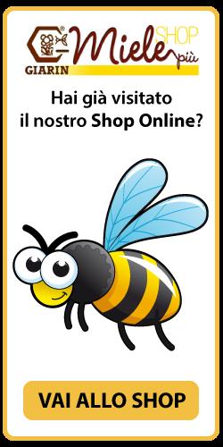 visita-shop-online