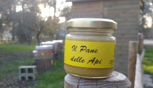 pane delle api polline fresco con miele