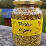 polline secco italiano